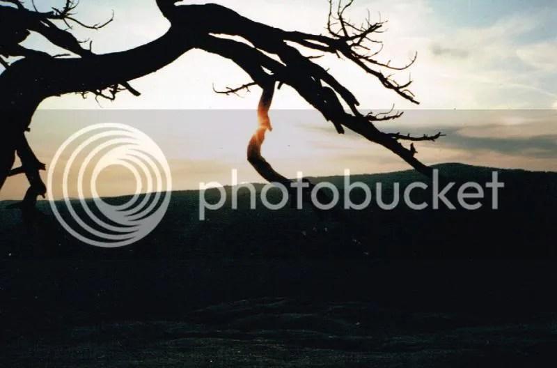 photo 18.jpg