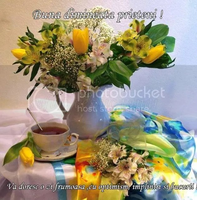 photo 10952542_421295728030473_2950192452781207065_n.jpg