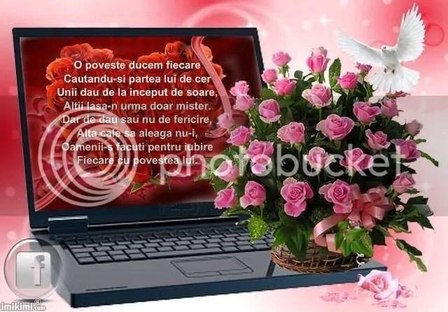 photo 11880427_914514111975401_7710822439073642211_n_zps5v3ptgxu.jpg