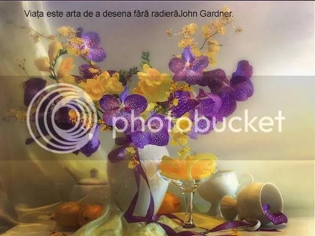 photo viata-este-arta-de-a-desena_356a52b3575789.jpg