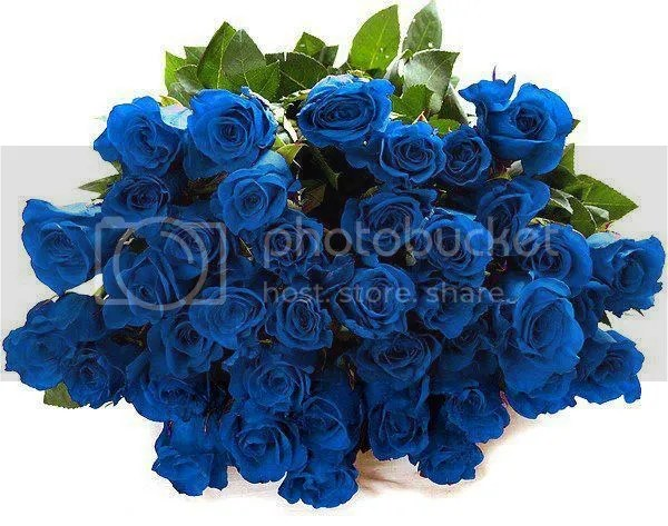 photo 625643_450999088306357_873321963_n.jpg
