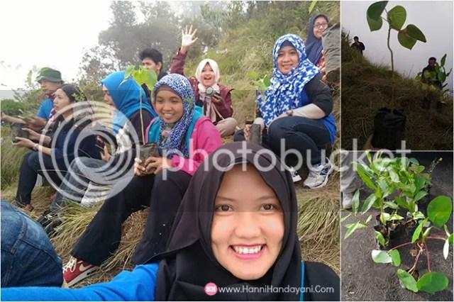 Konservasi Bukit Cinta Bromo