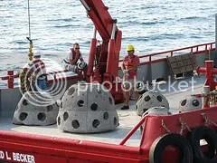 Cementaerios coralinos