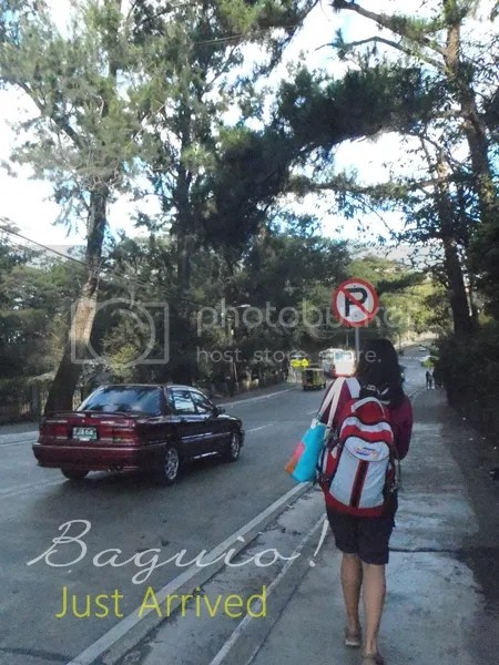 Cold Temperature - Baguio City Tour