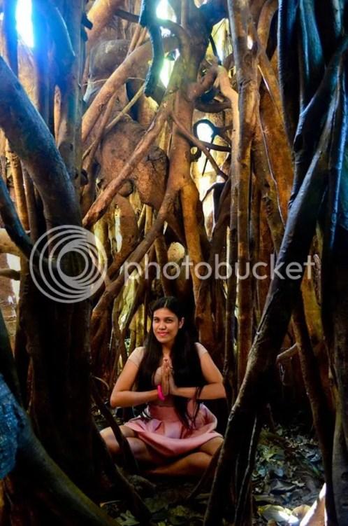Inside Balete Tree Baler