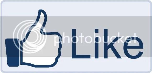 photo Facebook-Like-Button-big-1_zps9fd69770.jpg