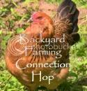 Backyard Farming Connection