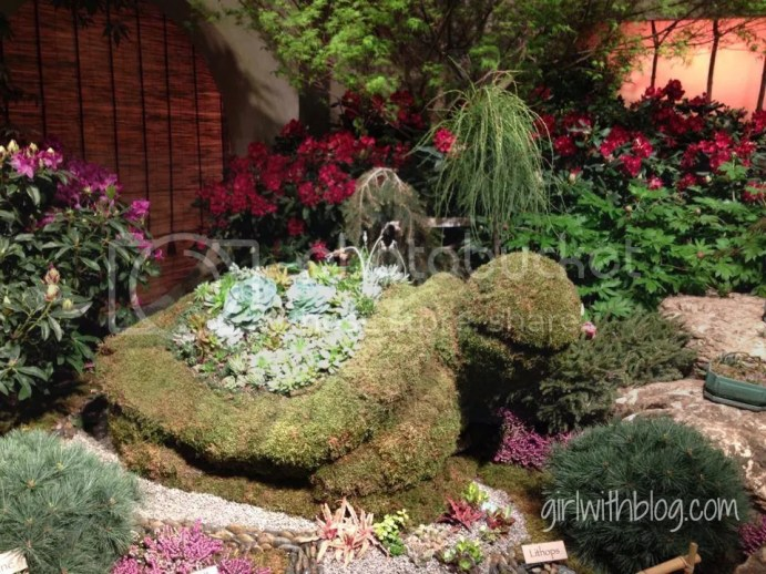 Macy's Flower Show review at girlwithblog.com