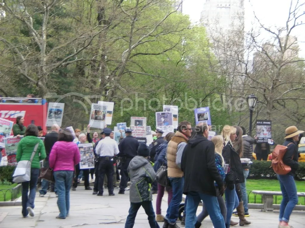 Protest for the unethical use of Horses in Central Park Pictures, Images and Photos