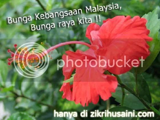 bungarayacopy.png bunga raya