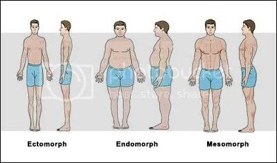 body types, Athlete, body, Body Fat, carbohydrates, carbs, fast, fat, fitbuff, gain, gym, high, muscle, Nutrition, power, protein, rate, strong, time