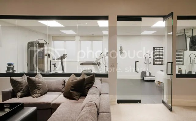 photo contemporary-home-gym_zps63utugge.jpg