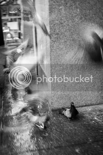 Stockholm Street Photography Workshop