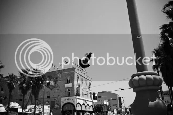 Street photography Venice Eric Kim GoPro