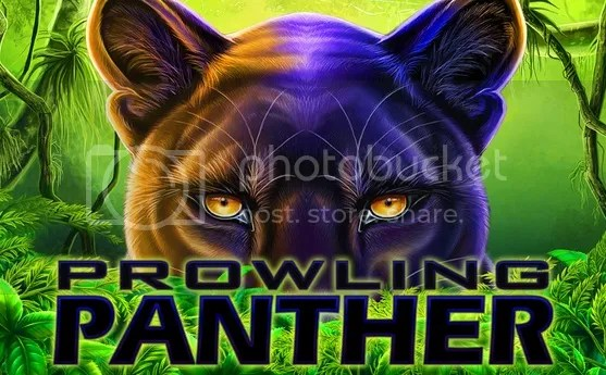 photo Prowlink Panther.jpg
