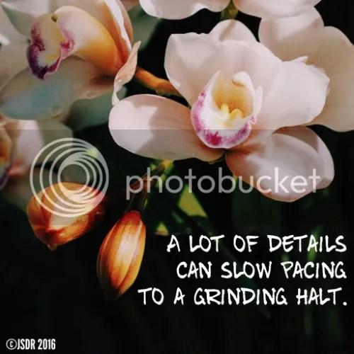 photo Pacing- Details slow pacing_zpsweyybmql.jpg