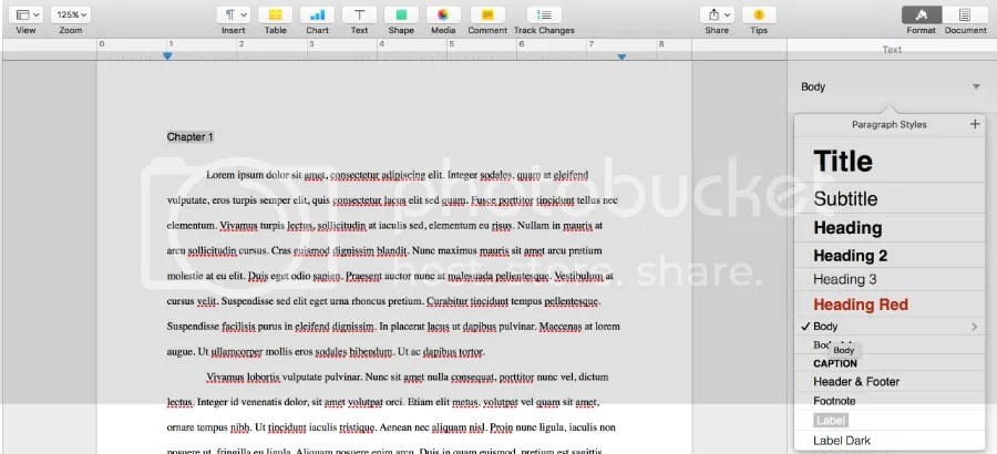 photo TOC Ex Creating Paragraph Style for your chapter heading_zps1ahrxirj.jpg