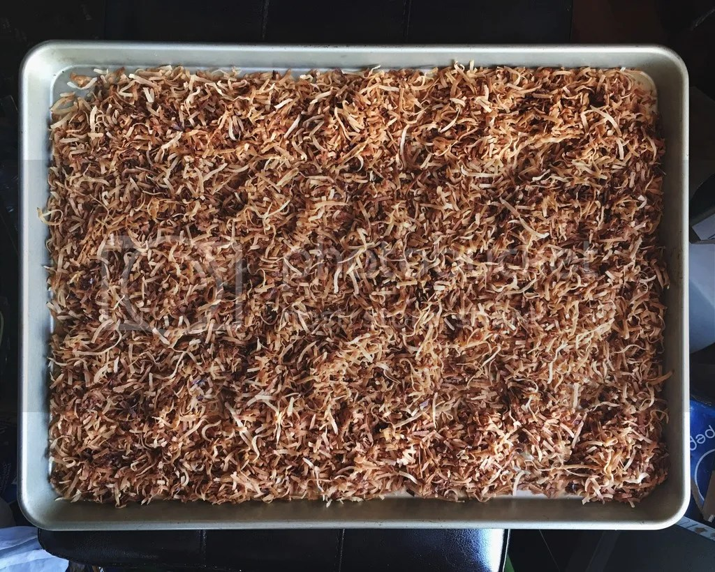 photo Toasted Shredded Coconut_zps5xwepdqs.jpg