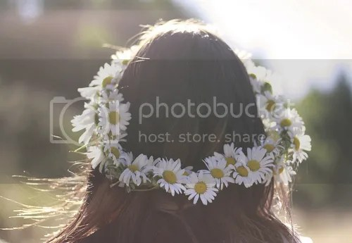 photo 44181-Daisy-Flower-Crown.jpg