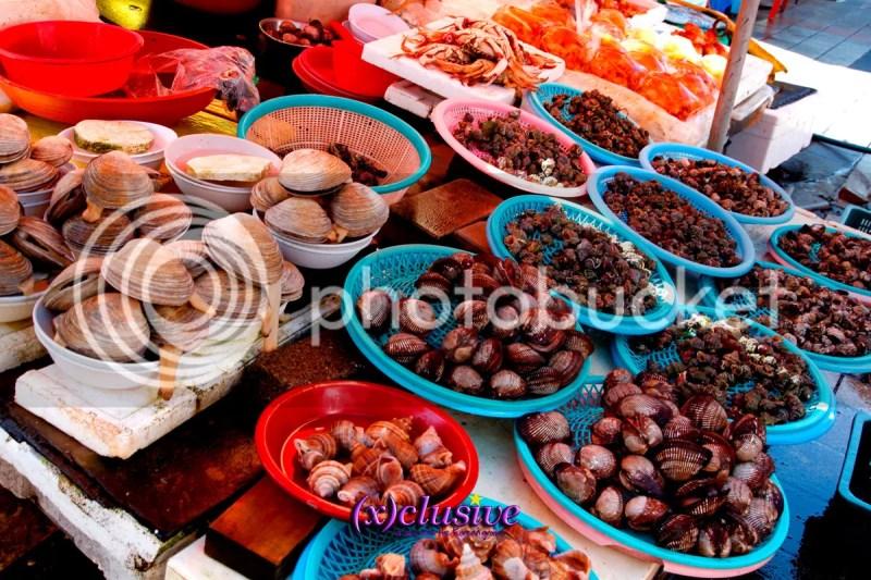 photo Busan03_zpslely7cvt.jpg