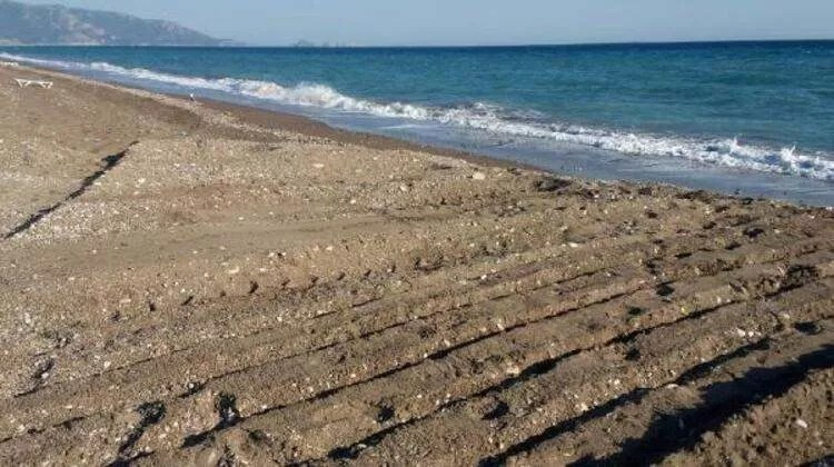 Antalya'da skandal görüntü! 'Büyütmeyelim arkadaşlar'