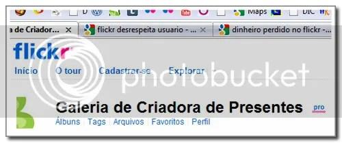 flickr e yahoo lesa usuario