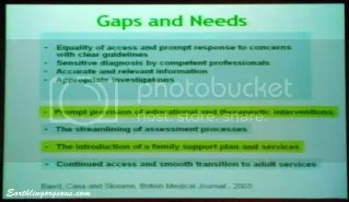 Autism Gaps and Needs