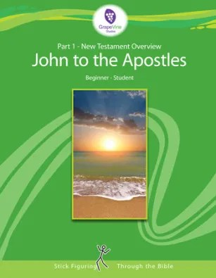 Birth of John to Jesus' Ministry {Grapevine Studies Review}