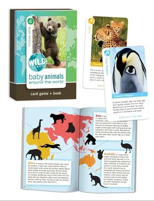 Wild Cards - Baby Animals Around the World photo Birdcage-wildcardsbabyanimals_zps7f8bf6b3.jpg