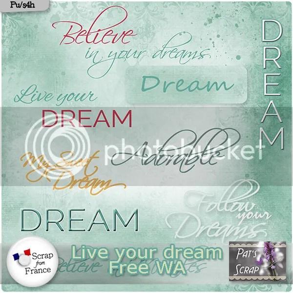 https://i2.wp.com/i1204.photobucket.com/albums/bb410/patriciaj73/Patsscrap_live_your_dream_Free_WA_zpsvdihmnxc.jpg