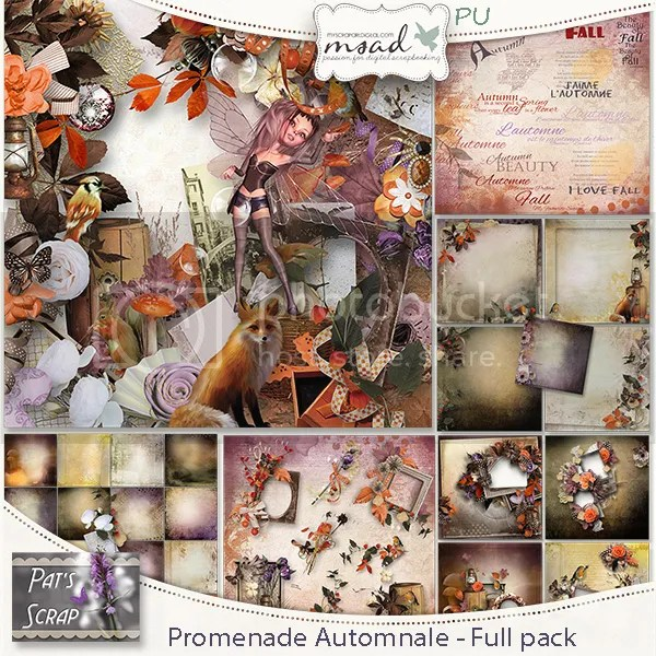 photo Patsscrap_Promenade_Automnale_FP_PV_zpse516e999.jpg