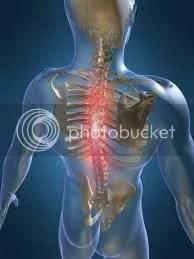 jacksonville chiropractic steven rhodes