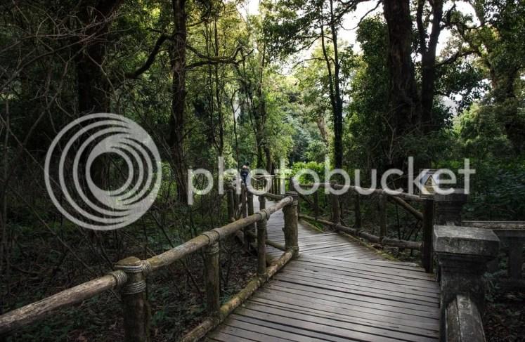 Jungletrekking Chiang Mai