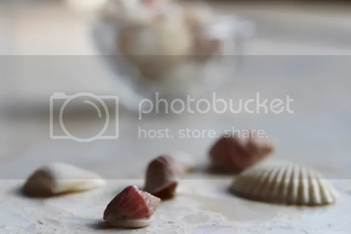 photo 012_zpsed549a70.jpg