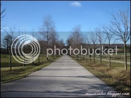 Lainzer Tiergarten1