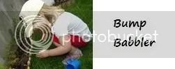 Bump Babbler