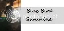 Bluebirdsunshine