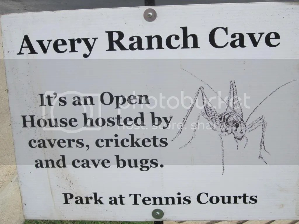 The Avery Ranch Cave Entrance