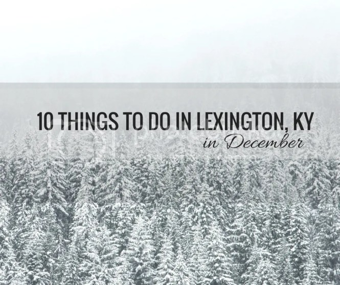 lexingtonky-winteractivities