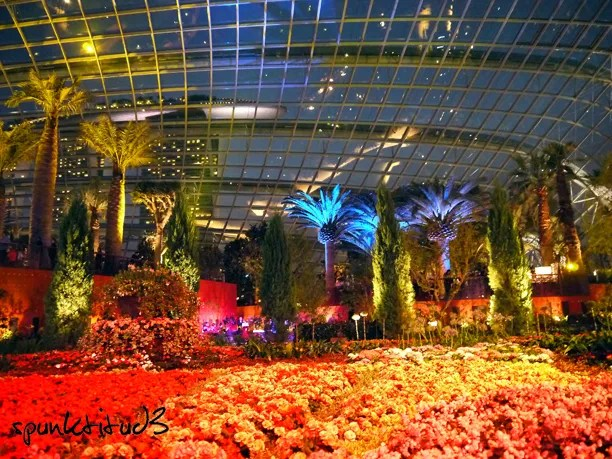Gardens by the Bay - Flower Dome