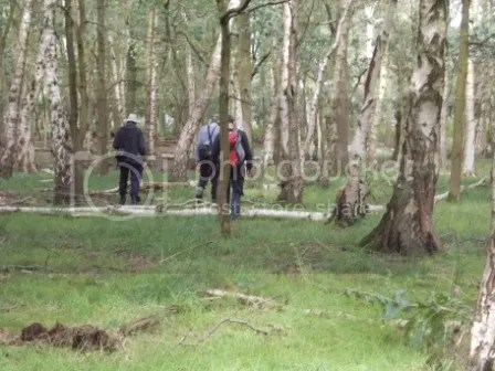 botanists in a wood
