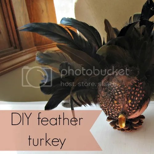 DIY feather turkey #turkeyscape
