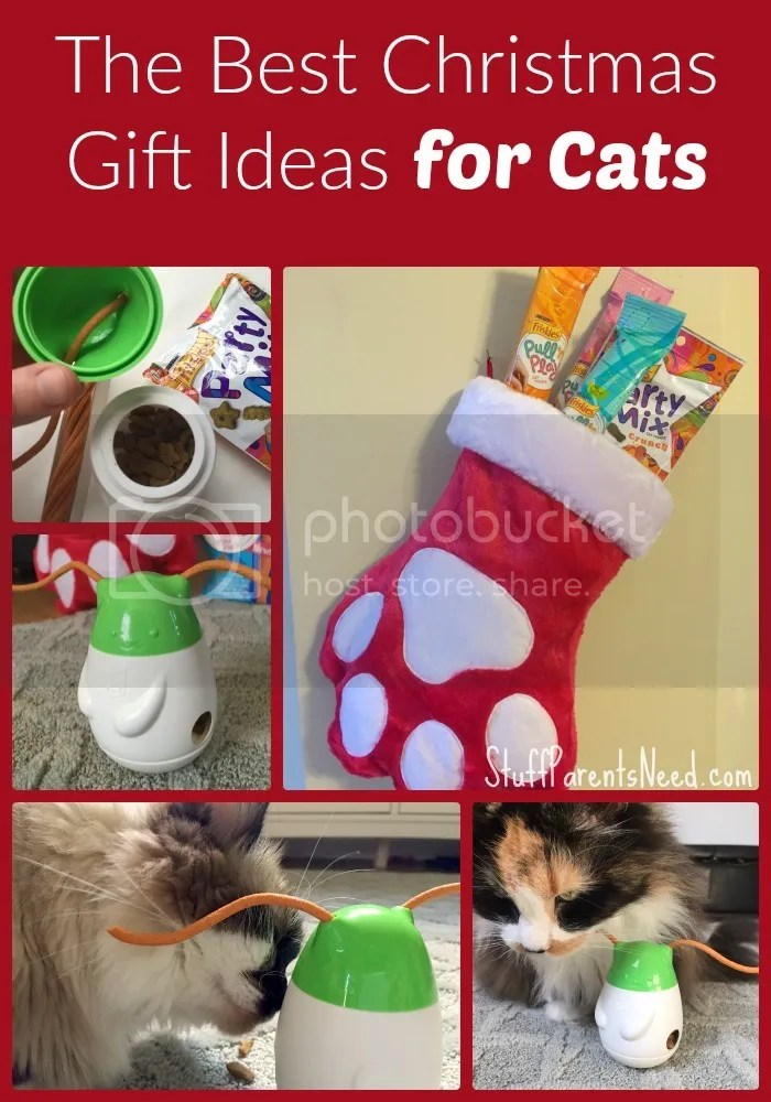 photo christmas gift ideas for cats_zpsrqipajpj.jpg