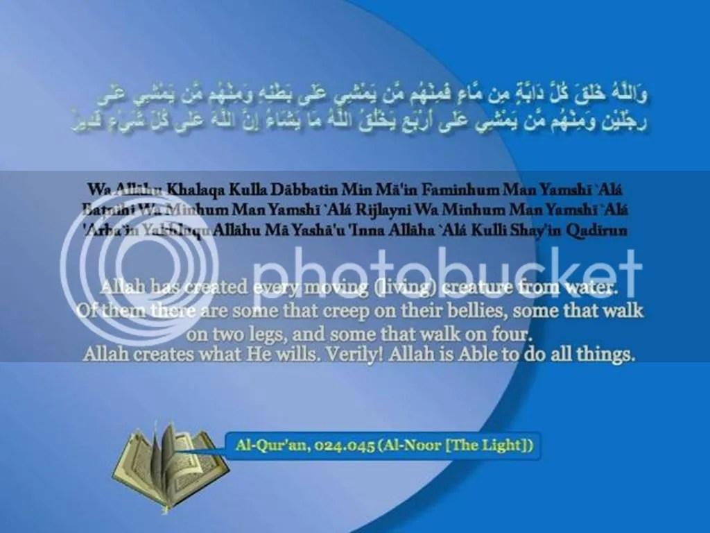 Quran 024_045
