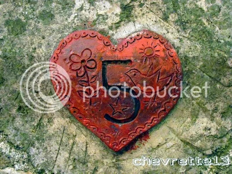https://i2.wp.com/i1252.photobucket.com/albums/hh578/chevrette13/communaut/IMG_2567Copier_zps331e0e62.jpg