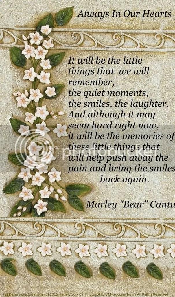 photo ALways in our hearts Marley bear cantu_zpssfaugiec.jpg