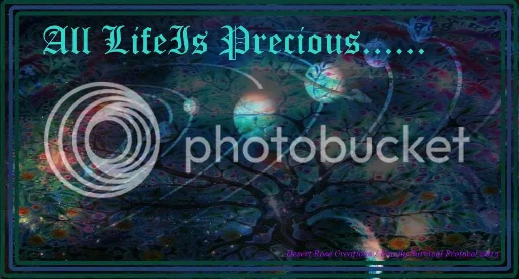 All Life Is  Precious photo AllLifeIsPrecious_zps717c96cc.jpg