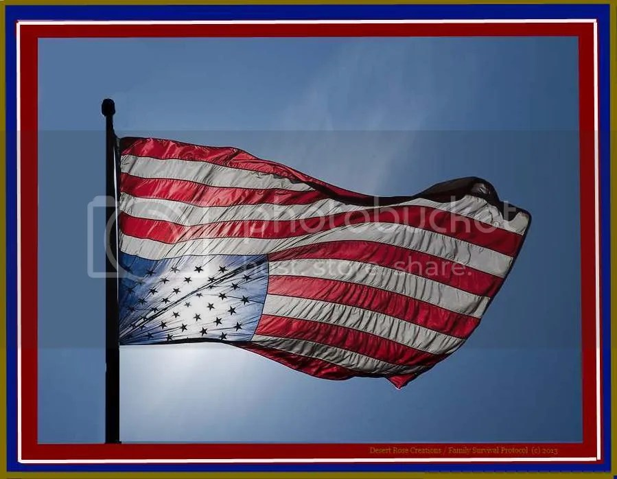 America In Distress photo AmericanFlaginDistresswframe_zps682a6b91.jpg