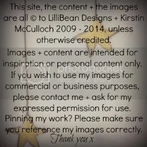 copy write 2014 photo copyfor2014.jpg