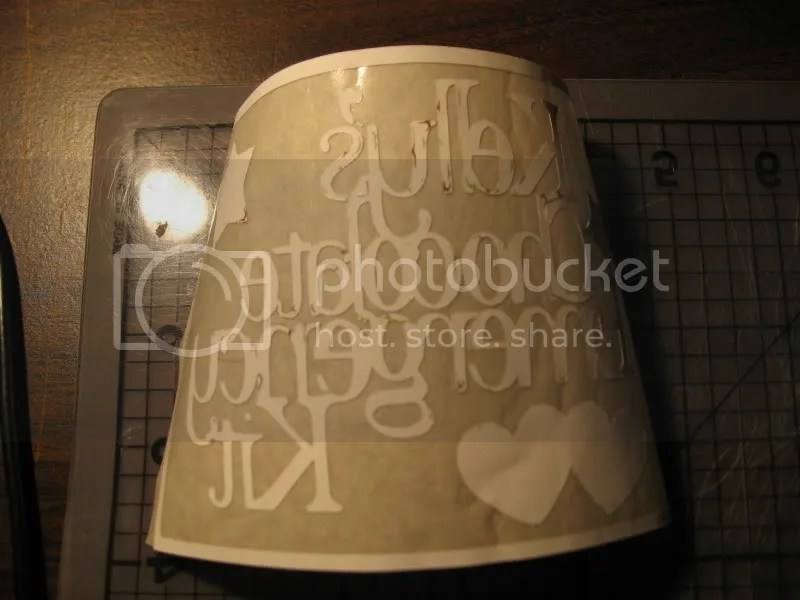 vinyl with transfer tape - back